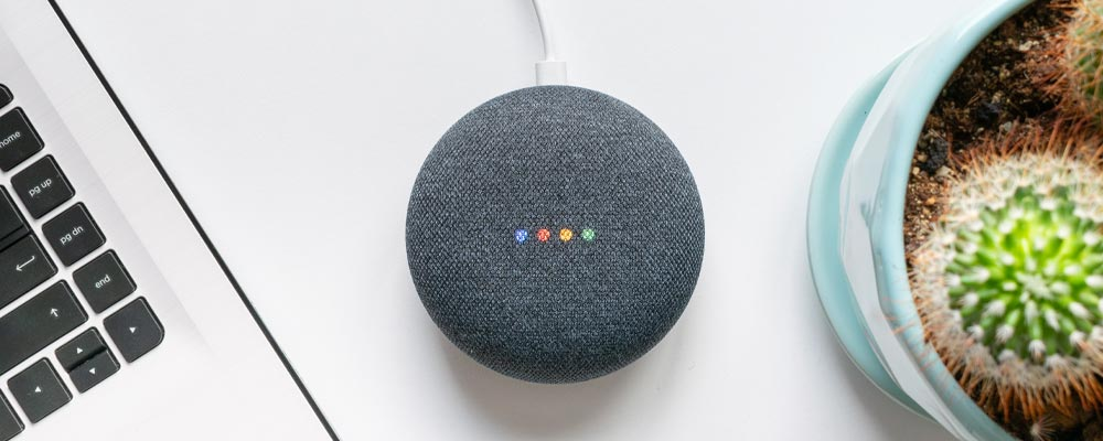 Google Hub - Voice Search
